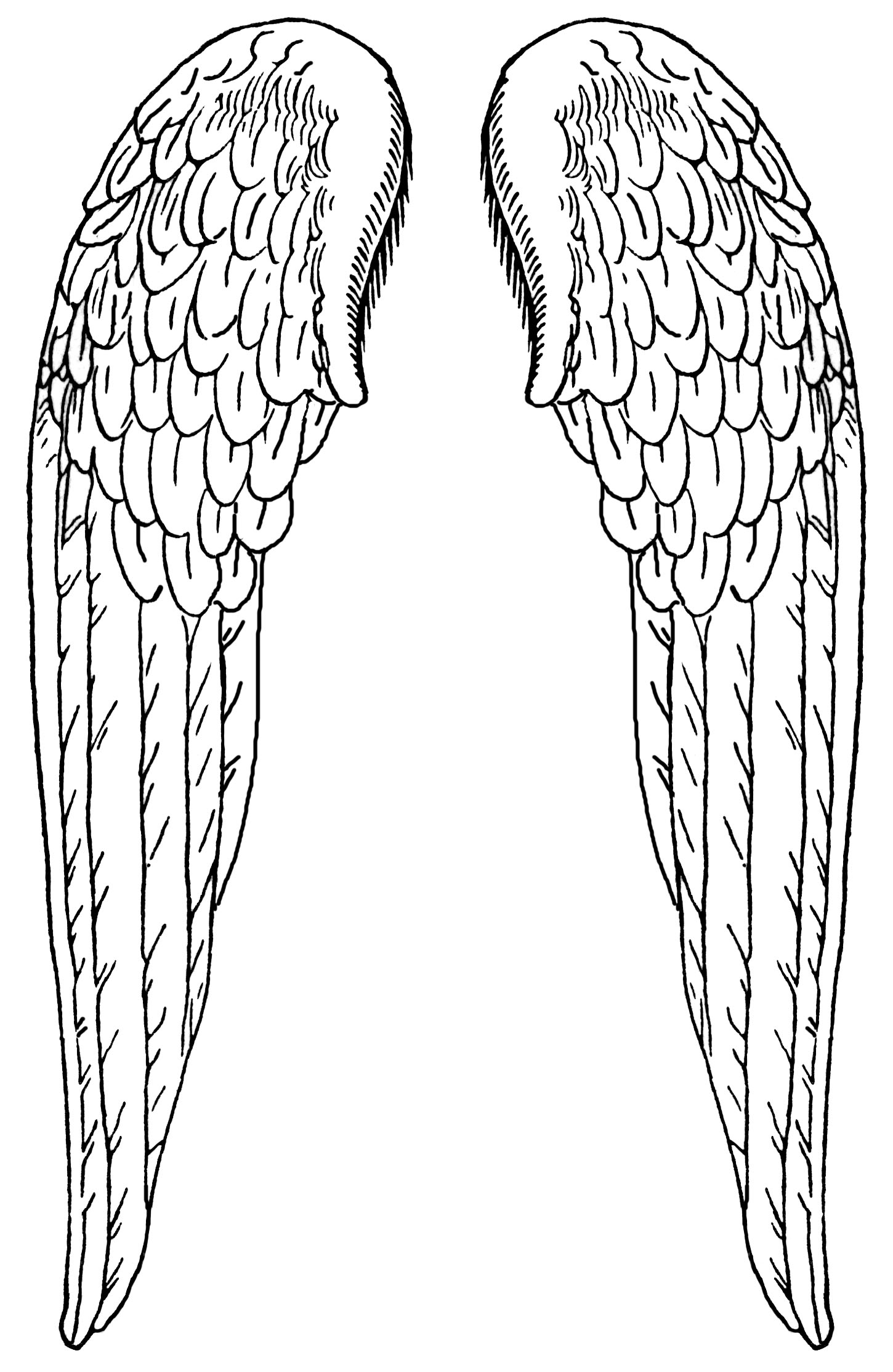free angel wings coloring pages - photo#15